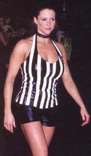 Stephanie Mcmahon Bikini Photo