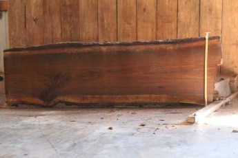 "519 Walnut -4 8/4  x  31"" x  24"" Wide x 8' Long"