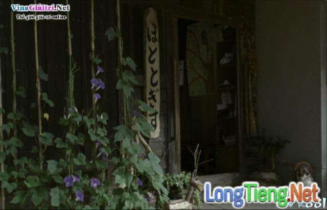 Xem Phim Khu Rừng Tang Tóc - The Mourning Forest - phimtm.com - Ảnh 3