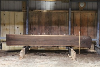"596  Walnut -1 8/4 x 19"" x 18"" Wide x  10'  Long"