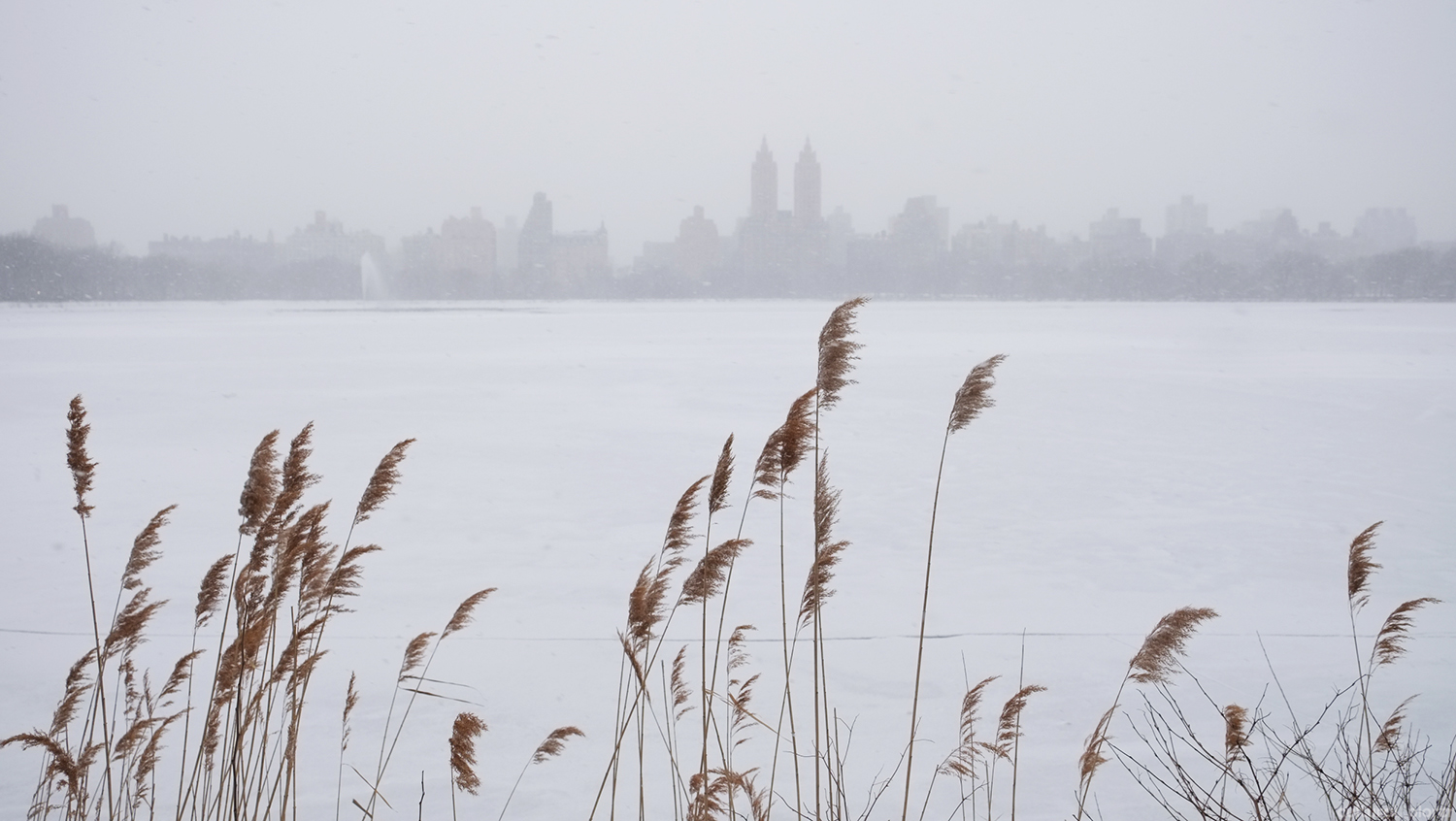 Central Park Reservoir Winter