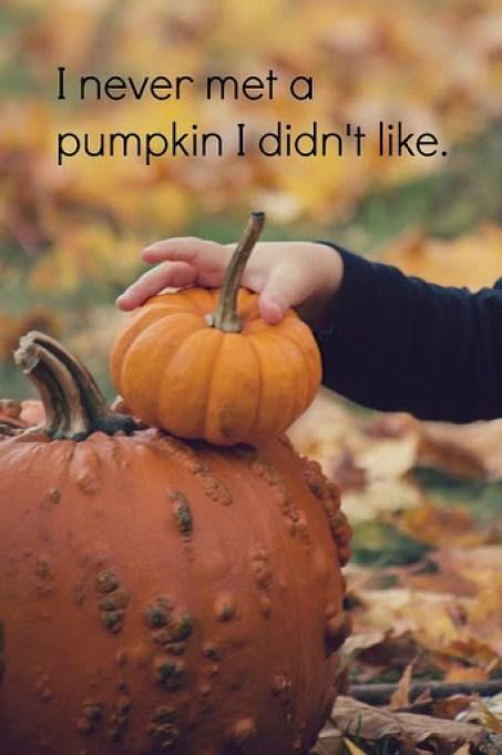 halloween catch phrases