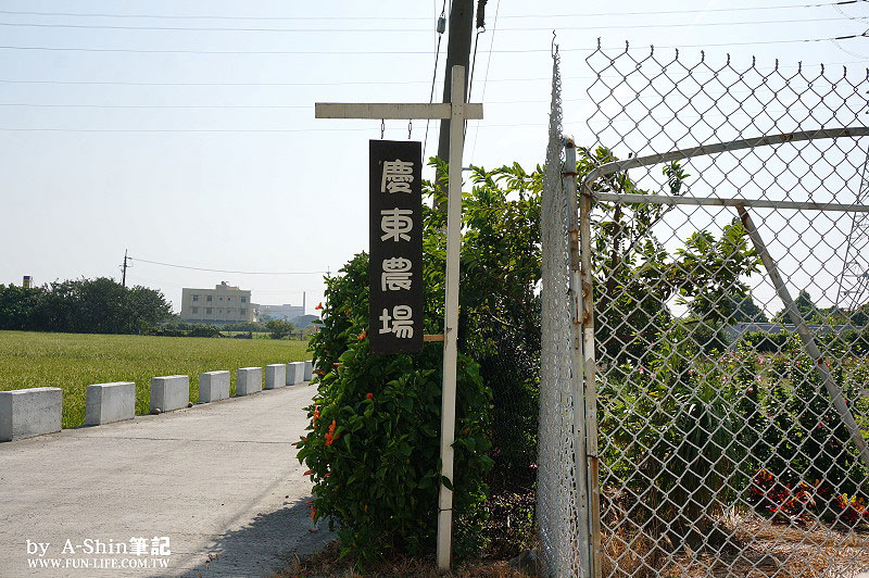 慶東大閘蟹生態農場1