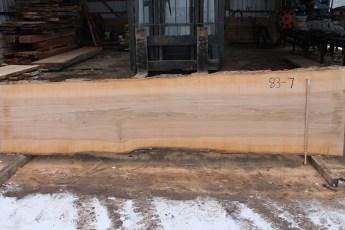 """083 - 7 Ash 2 1/4"""" x 34 - 27"""" Wide x 12' Long  Kiln dried"""