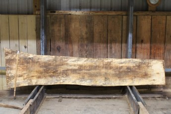 """612 Maple Spalted - 6 10/4x 26"""" x 18"""" Wide x  10'  Long"""