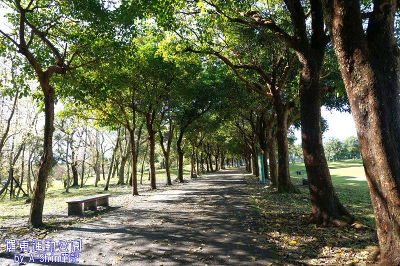 羅東運動公園|跟著阿新來羅動運動公園散步囉!對了,羅動運動公園超大..