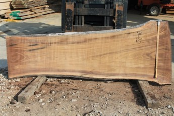 "058 -10 Walnut 2"" x 39 - 25"" Wide x 8' Long  Kiln dried"