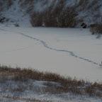 0178_Kanada_15-Nov-11_Limberg.jpg
