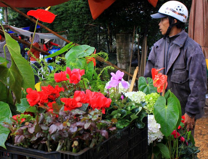 A flower seller at Da Lat
