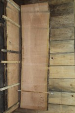 "Cherry 378-6 2 1/2"" x 29 - 26"" Wide x 8' Long  Kiln Dried"
