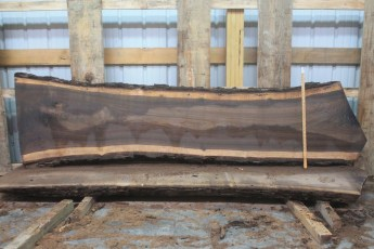 "Walnut 302-6  Length 9'  6"", Max Width (inches) 29 Min Width (inches) 21 Thickness 10/4  Notes : Kiln Dried"