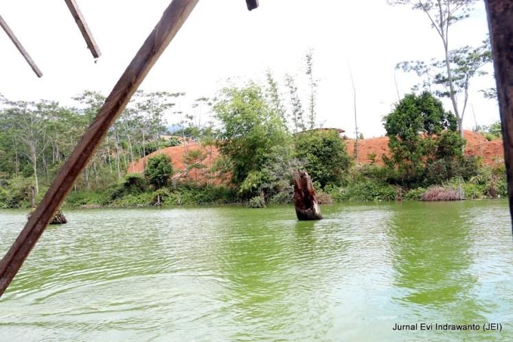 Air Danau Hijau juga dipercaya dapat menyembuhkan penyakit kulit