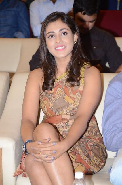 Actresd Madhu Shalini At Goodachari Movie Success Meet Photos ❤