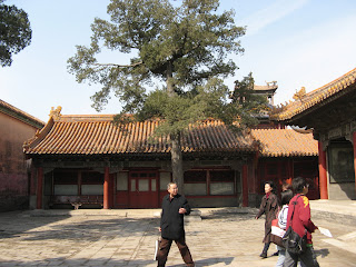 2230The Forbidden Palace