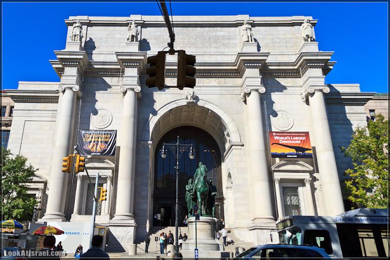 Америка 2.0 / Нью Йорк, Американский музей естественной истории