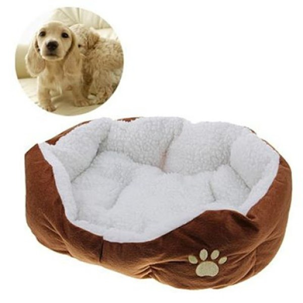 3 Cutest Things For Your Dog