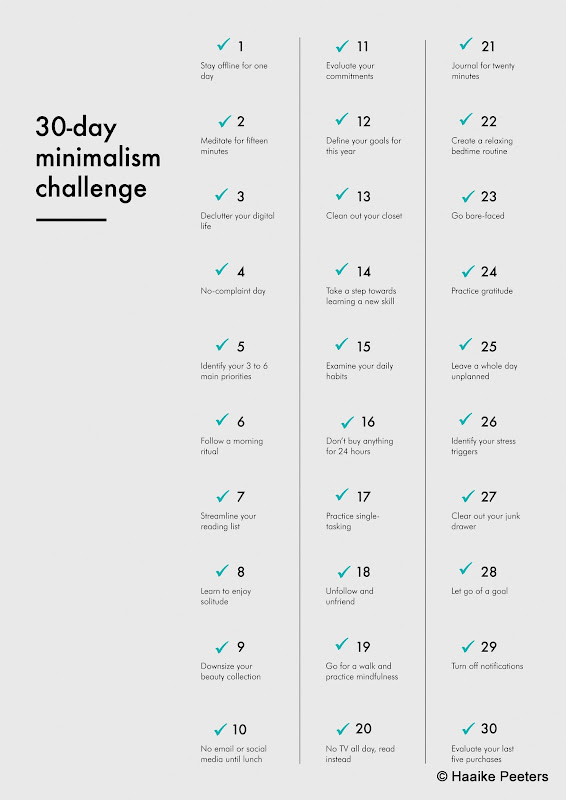 30-day minimalism challenge conclusie (Le petit requin)