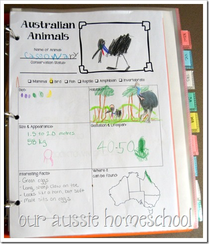 Australian Animal Fact SheetFree Printable