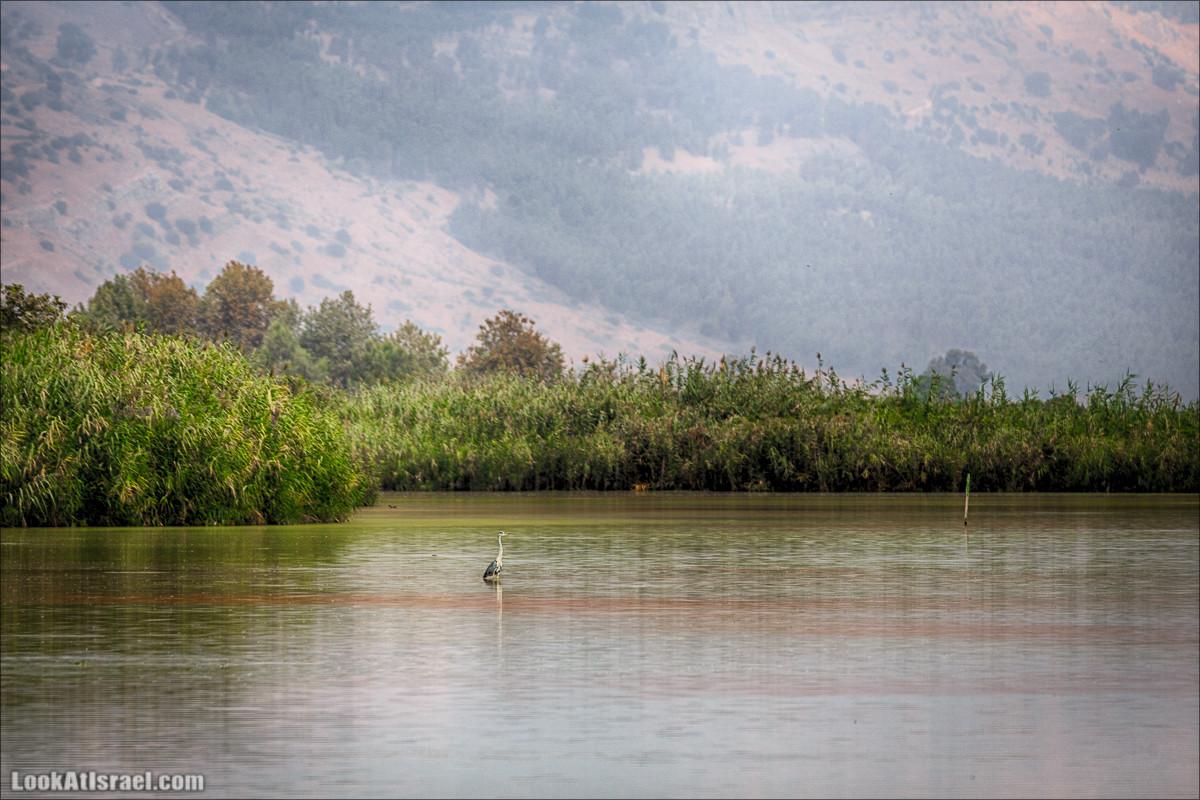 Одно фото на озере