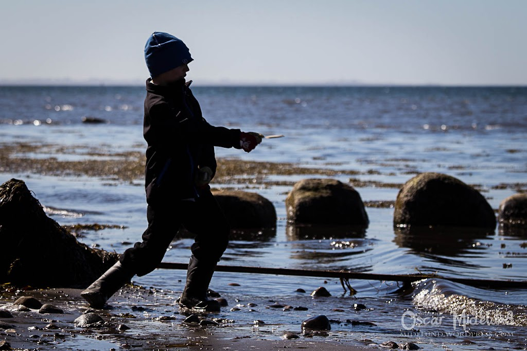 Strandstädning 2013 - IMG_3283.jpg