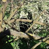 Westhoek Maart 2011 - 2011-03-19%2B15-42-46%2B-%2BDSCF2093.JPG