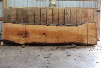 """525 Bass Wood -1 10/4 x 35"""" x 26"""" Wide x 12' Long"""