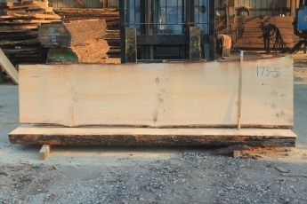 White Pine 173-5  Length 10' Max Width (inches) 31 Min Width (inches) 27 Notes 10/4
