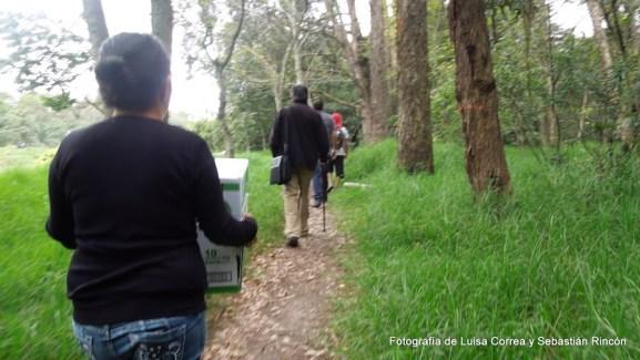 Liberación aves Humedal Córdoba