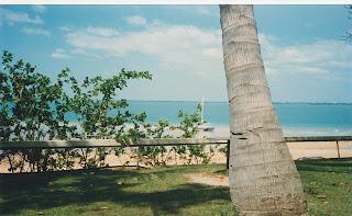 5120Darwin Harbour
