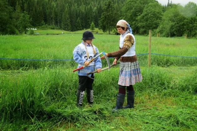 Kosidba u Norveskoj- Turisticka organizacija opštine Ljig160