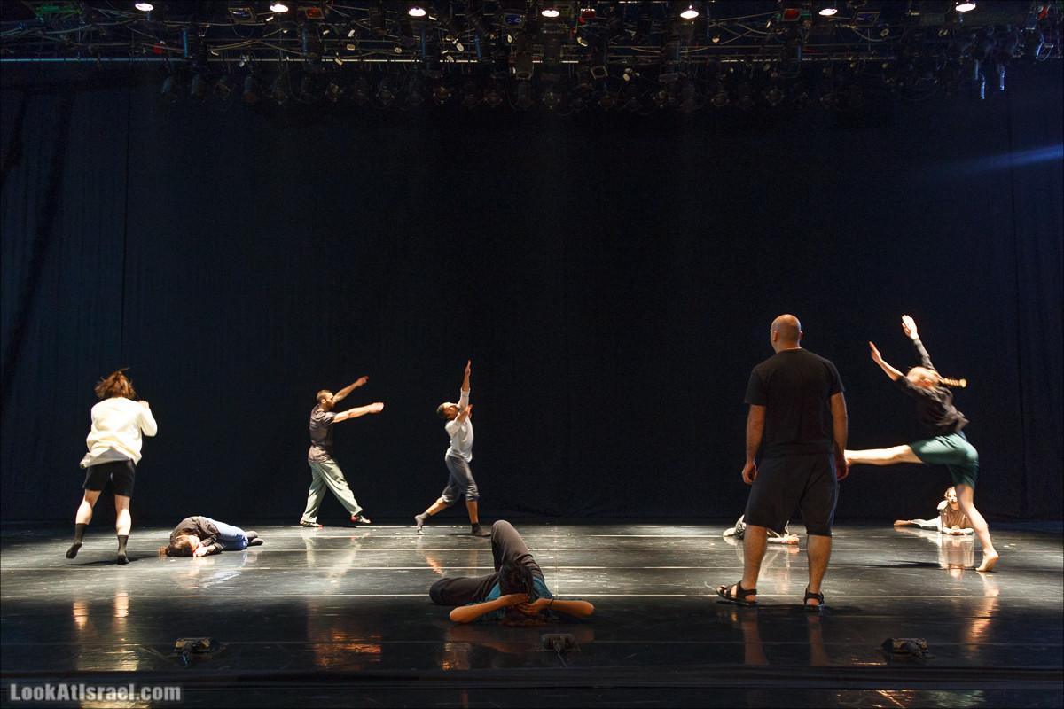 Киббуцный ансамбль современного танца | Kibbutz Contemporary Dance Company | להקת המחול הקיבוצית | LookAtIsrael.com - Фото путешествия по Израилю