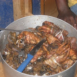 Ekona Medical Outreach 2008 - 3.jpg