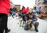 Iditarod2015_0091.JPG