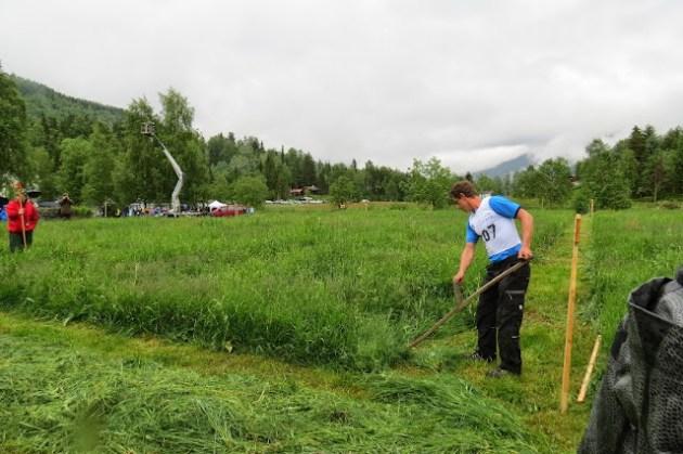 Kosidba u Norveskoj- Turisticka organizacija opštine Ljig233