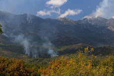 Also lots of forest fires around the Lake Skadar