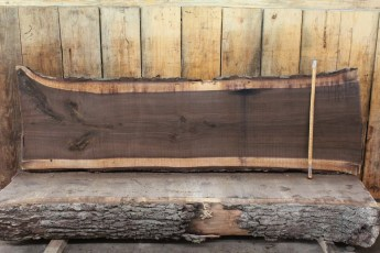 "448 Walnut -5 2"" x 31"" x 25"" Wide x 8' Long"