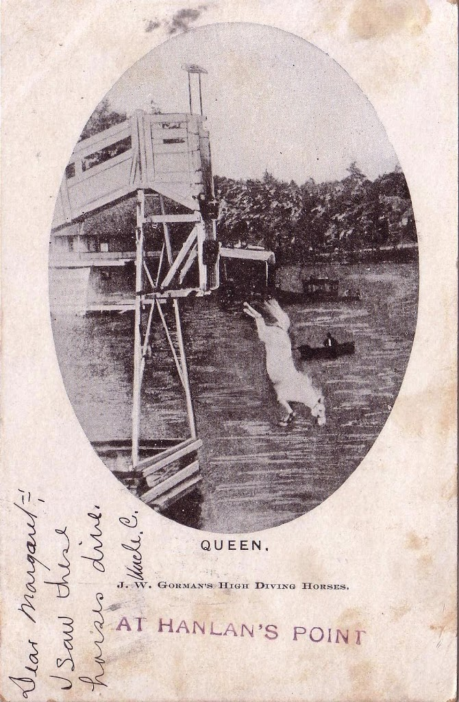 postcard-toronto-island-hanlans-point-high-diving-horse-queen