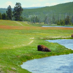 Master-Sirio-Ji-USA-2015-spiritual-meditation-retreat-5-Yellowstone-Park-04.jpg
