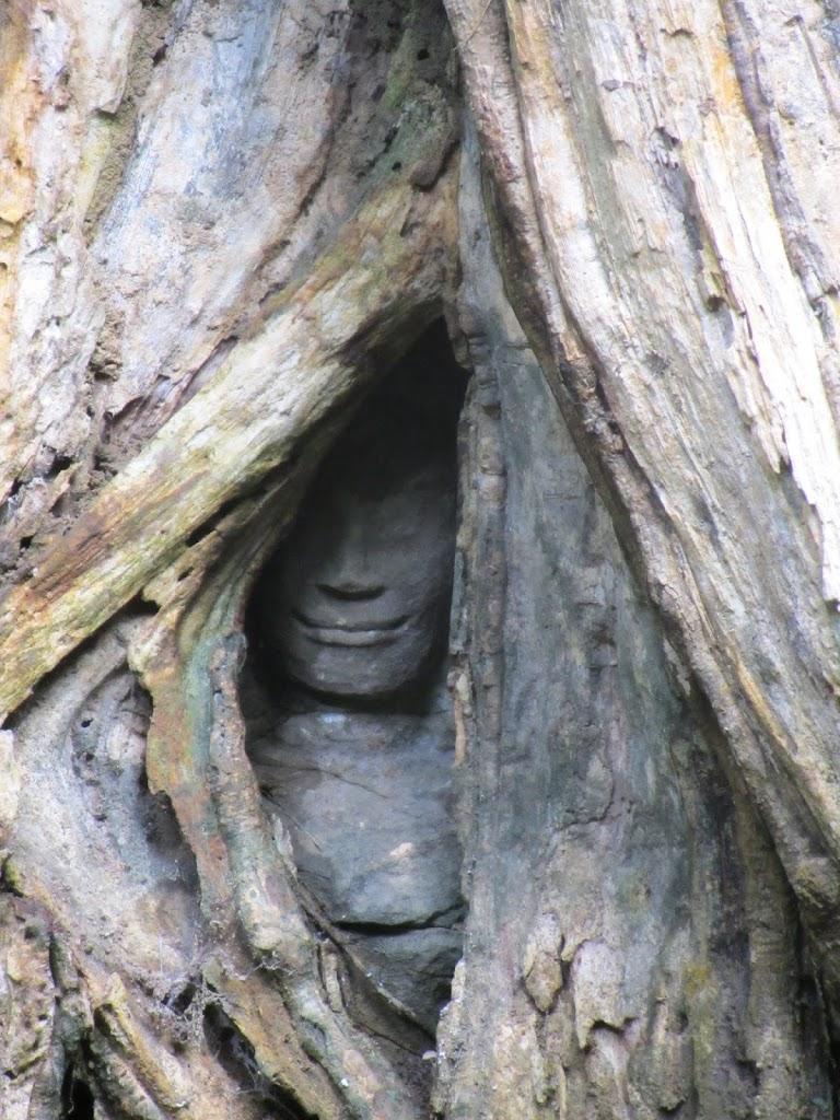 0122Angkor_Wat