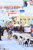 Iditarod2015_0275.JPG