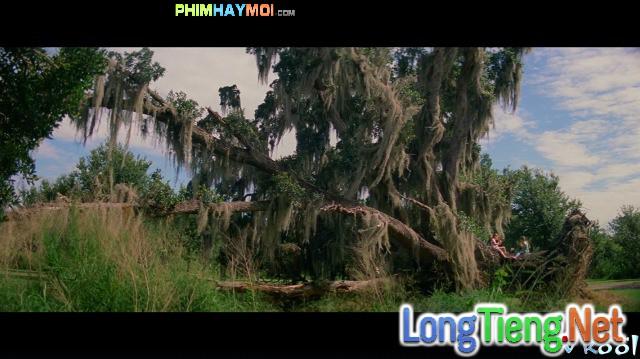 Xem Phim Dự Án Florida - The Florida Project - phimtm.com - Ảnh 3