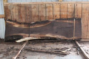 "508 Walnut -10 10/4  x  33"" x  18"" Wide x 10' Long"