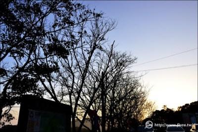 薑麻園的夕陽