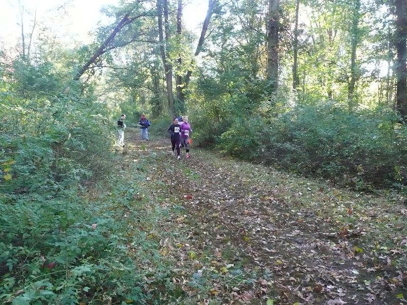 Mountain Lakes Trail Run Fall 2015 - P1040586.JPG
