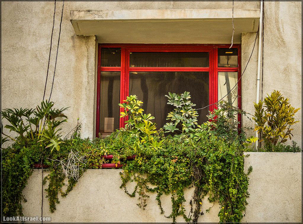 Тель Авивские балконы | LookAtIsrael.com - Фотографии Израиля и не только...