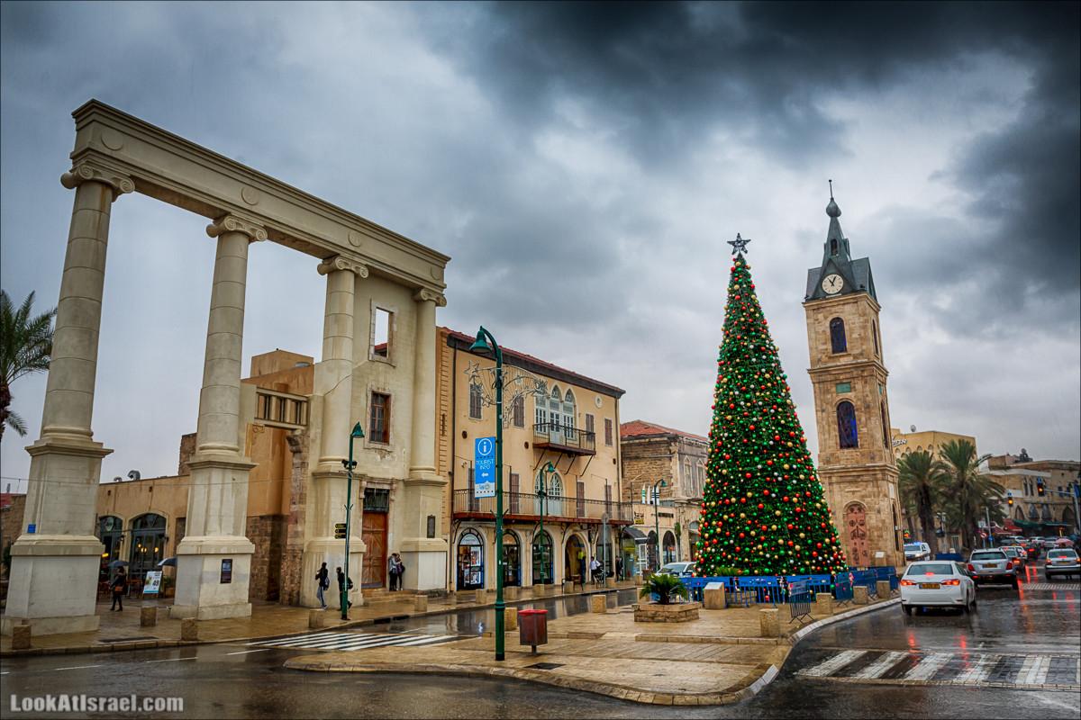 Рождественская ёлка в Яффо | Jaffa Christmas tree | LookAtIsrael.com - Фото путешествия по Израилю