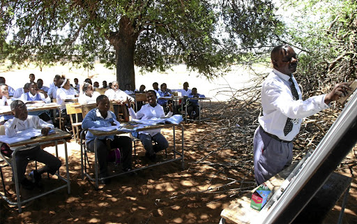 Limpopo Tree School Can T Be Fixed Says Education