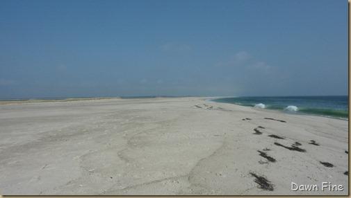 south beach little_012