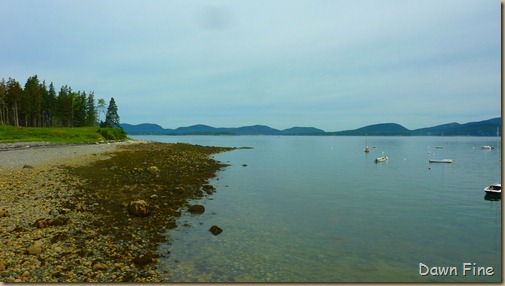 Acadia National Park_105