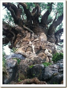 tree of life close up